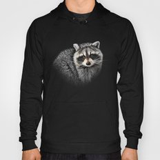A Gentle Raccoon Hoody