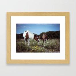 ponies Framed Art Print