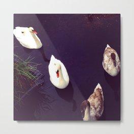 Swan Quay Metal Print