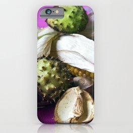 Autumnal Still Life with Chestnut and Corn iPhone Case