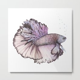 Pastel Betta Fish Metal Print