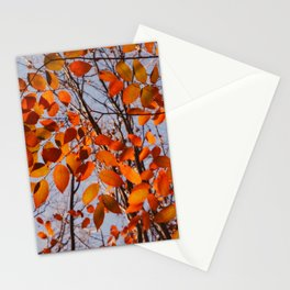 Autumn Desire Stationery Cards