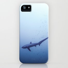 Thresher shark in the blue iPhone Case