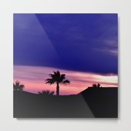 Palm Sunset - III Metal Print