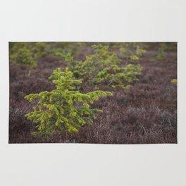 Little Evergreen Rug