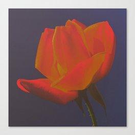 Night Bloom Canvas Print
