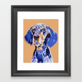Noble English Setter Framed Art Print