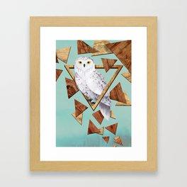 Owl in the Woods Framed Art Print