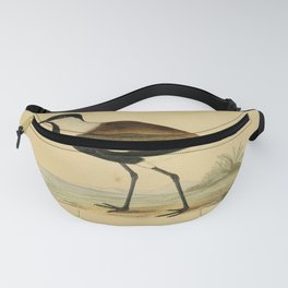 Vintage Print - A History of the Birds of Europe (1862) - Spur-Winged Plover Fanny Pack