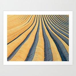 Potatoe Field in NRW Art Print