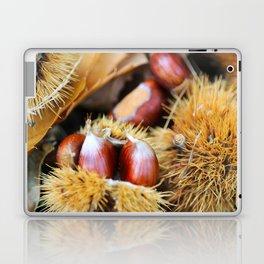 Chestnuts Laptop & iPad Skin