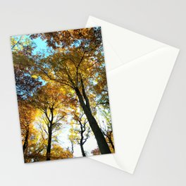 Glowing Treetop Stationery Cards