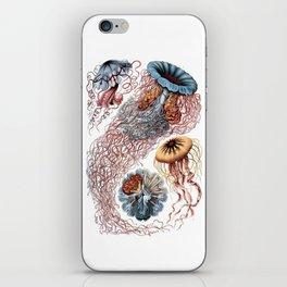 Discomedusa iPhone Skin