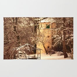 Wintry mood at the castle garden of Laupheim Rug