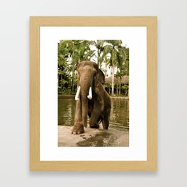 Magnificent Beast Framed Art Print
