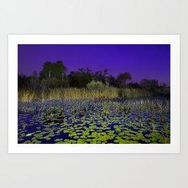 Lillies at Blue Hour Art Print