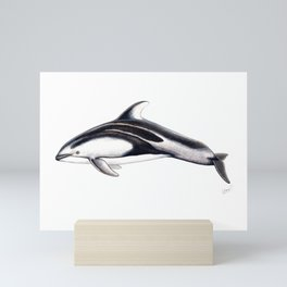 Pacific white-sided dolphin Mini Art Print