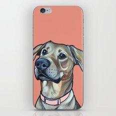 Ramona iPhone & iPod Skin