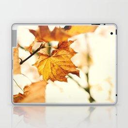 A Fall Like This Laptop & iPad Skin
