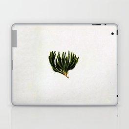 Botanical Moss Laptop & iPad Skin