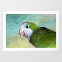 parrot Art Prints featuring Parrot by ThePhotoGuyDarren