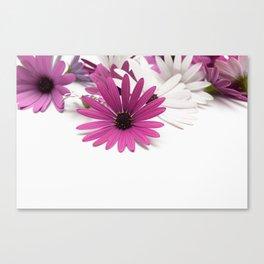 Fleur violette Canvas Print