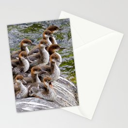 10 Little Mergansers on a Rock Stationery Cards