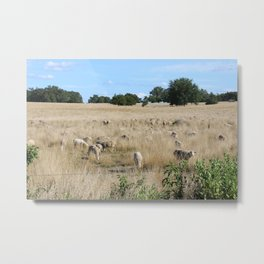 Sleep Land Metal Print