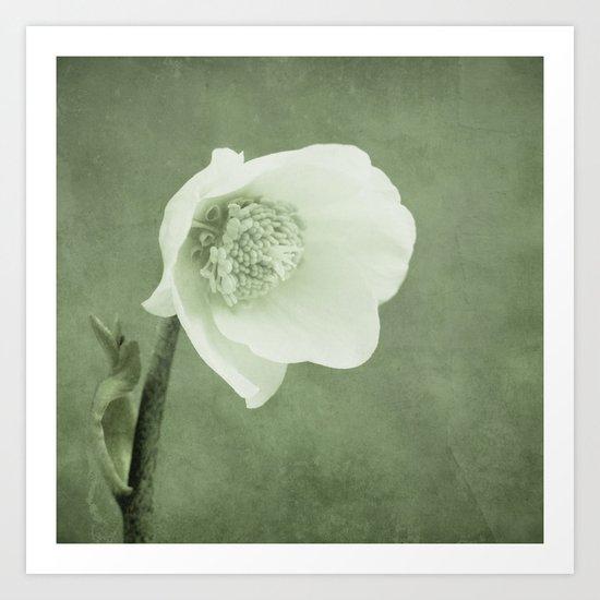 silent hope Art Print