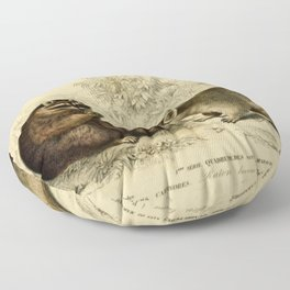 Naturalist Raccoons Floor Pillow