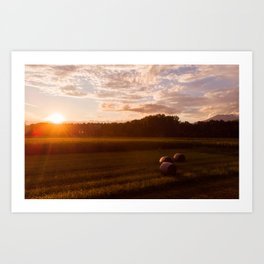 Rural Sunset Art Print