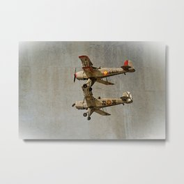 Old Buckers Metal Print
