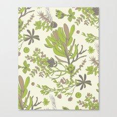 Cream Cradle Flora Canvas Print