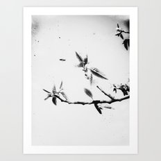 | time fission - or quantum memory, experiment no. one | Art Print