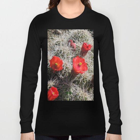A Hedgehog Cactus Looks Sunward Long Sleeve T-shirt