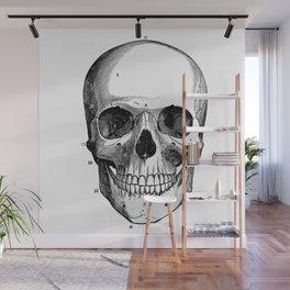 Skull 6 Wall Mural