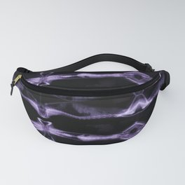Cat X-Ray Number 2 Fanny Pack