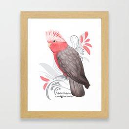 Galah Cockatoo Framed Art Print