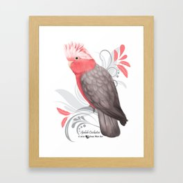 Galah Cockatoo Framed Art Print