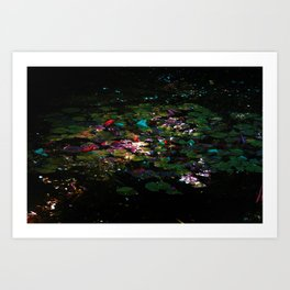 'The Pond' by TDL Art Print