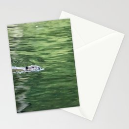 Beaver on an Evening Swim Stationery Cards
