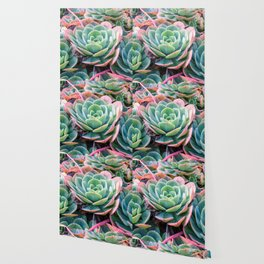 Succulent Garden Vibrant Pastel Wallpaper