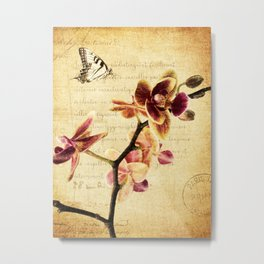 Orchid Flower Butterfly Modern French Country Cottage Art A183 Metal Print