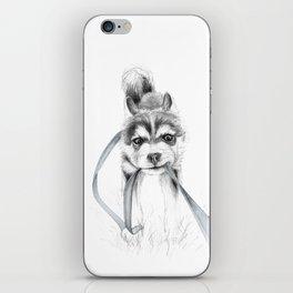 Perseverance :: A Siberian Husky iPhone Skin