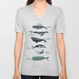 Cetacean Unisex V-Neck