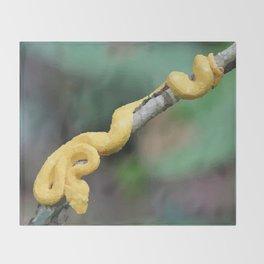Cesta Rica Yellow poison Snake - Reptiles Throw Blanket