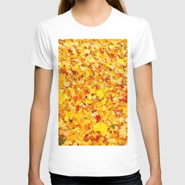 Lovely Day Photography T-shirt