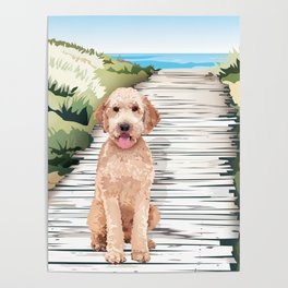 Doodle at the Beach Poster
