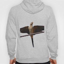 Swallow Song Vector Hoody