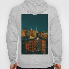 New York City Apartments (Color) Hoody